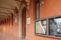Aula Gnudi della Pinacoteca (BO)